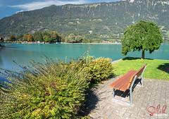 Switzerland, Interlaken (© Saleh AlRashaid / www.Salehphotography.net) Tags: switzerland interlaken saleh