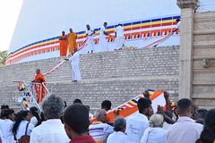 Ceremony at Ruvanvelisaya Dagoba, Anuradhapura (nickdippie) Tags: srilanka buddhism anuradapura temple dagoba ceremony buddhistceremony ruvanvelisaya