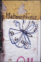 2016 (uno900) Tags: streetartmadrid graffitimadrid arteurbanomadrid graffiti madrid street art arte urbano graffitis espaa spain malasaa mariposa metamorfosis metamorphosis
