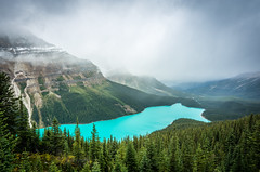 Day 4 - Peyto Lake Lookout (Siyuant) Tags: banff national park peyto lake lookout glacial water aqua