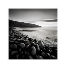 Culernose Point, Northumberland (DavidO'Brien) Tags: culermosepoint northumberland pinhole lensless film nopo120 delta100 analogue seascape seashore blackandwhite square