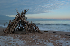 Shelter 2 Colour (Sandy Beach Cat) Tags: uk beach scotland sticks pentax flotsam lothian snowice johnmuirpark k10d tyneinghame
