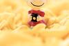 Feliz dia, fotógrafos ♥ (Natália Viana) Tags: cute toy peanuts snoopy lovely miniatura objeto sallybrown natáliaviana