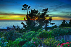 Pacific Garden Sunset (Joe Josephs: 3,166,284 views - thank you) Tags: california sunset landscapes sunsets californiacentralcoast californiabeaches landscapephotography blinkagain nikon1635f40 galleryoffantasticshots nikond800e copyrightjoejosephsphotography copyrightjoejosephs2013