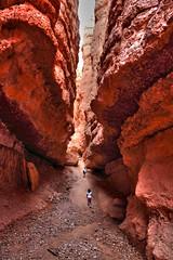 Navajo Trail: Wall Street (RH&XL) Tags: park utah canyon trail national bryce navajo