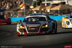 APR-Motorsport-Rolex-24-2013-051