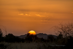 Sunset Jodhpur (Tarun Chopra) Tags: travel sunset india canon photography gurgaon rajasthan touristattractions jodhpur eosm efs55250mmlens indiatravelphotography rajasthaninwinters canoneosm canonmirrorlesscamera gurugram
