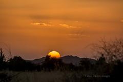 Sunset Jodhpur (Tarun Chopra) Tags: travel sunset india canon photography gurgaon rajasthan touristattractions jodhpur eosm efs55250mmlens indiatravelphotography rajasthaninwinters canoneosm canonmirrorlesscamera gurugram