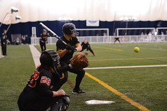 20_1205 (Joels Fastpitch Photos) Tags: minnesota university state bart msu huskies rochester dome softball ncaa robinson mavs mavericks stcloud mankato brittani 2013 dii