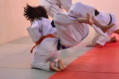 DSC_0805-1 (Ouftibarracuda) Tags: judo crossing 20130228
