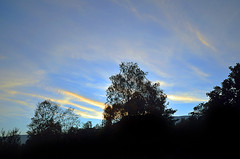 INTO EVENING (DESPITE STRAIGHT LINES) Tags: autumn sunset england sky cloud lake mountains fall nature wet water grass clouds forest landscape countryside rocks flickr cloudy hill shoreline lakedistrict sigma overcast bluesky september hills boulders shore cumbria gps coniston mothernature thelakes thelakedistrict sigma1020mm onwater paulwilliams conistonwater eveniing nikoln ultrawidelens waveswave conistonlake d7000 nikongp1 nikond7000 despitestraightlines conistonboatlaunch sunsetoverconistonwater sunsetoverconistonlake