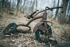 Things You Find In the Woods (.monodrift) Tags: wood winter abandoned bike forest nikon random tricycle exploring 28mm rusty things forgotten sykesville f18g