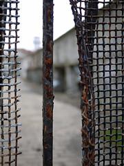 Eastern State Pen 03-13_244 (AbbyB.) Tags: philadelphia decay prison jail easternstatepenitentiary pennslyvania disintegrate