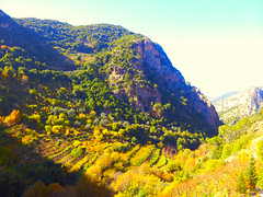 saints valley - Lebanon (Hanna Khoury) Tags: trees lebanon fall automne landscape valley paysage liban autunm       kadisha    kadicha