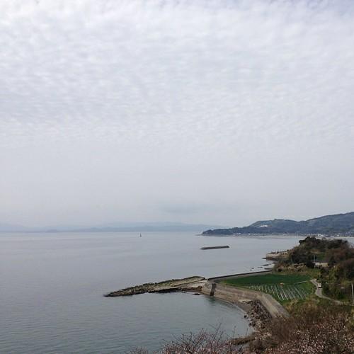바다와 섬 1.
