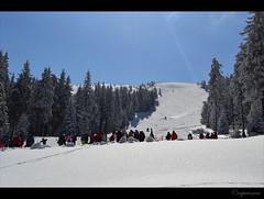 Lupu slope, Straja, romania (capreoara) Tags: sun mountain snow ski march nikon resort romania gondola slope hunedoara valcan partia straja teleski 2013 lupeni lupu teleschi d3100