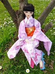 .:: Hanami - Raduno bjd ::. (Bunraku Doll) Tags: cute girl doll meeting serenity kimono bjd  resin custom dollfie superdollfie volks sd10 hanami megu bambole  radunobjd