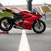 "2013-ducati-1199-panigale-r-official-pictures-photo-gallery_7 • <a style=""font-size:0.8em;"" href=""https://www.flickr.com/photos/78941564@N03/8585454187/"" target=""_blank"">View on Flickr</a>"