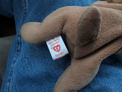 Beanie Baby found in Target Parking Lot Cart 3-11-13 02 (anothertom) Tags: dog iowa lap ty spunky beaniebabies coralville