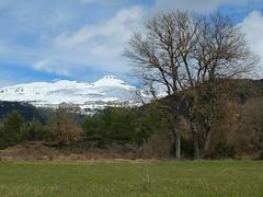 Paisaje (Patataasada) Tags: espaa mountain snow tree field spain huesca nieve cielo rbol campo marzo montaas pirineo aragn pirineoaragons collarada villana