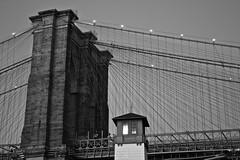 Brooklyn Bridge (Toni Tan) Tags: nyc ny newyork brooklyn dumbo brooklynbridge brooklynbridgepark brooklynicecreamfactory tonitan