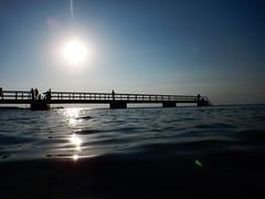 Underwater Ribersborg (Alenius) Tags: underwater under water ocean snorkling snorkelling snorkeling dive diving resund malm sweden skne tng sea snorkla sverige undervatten vatten hav havet dyk dyka nikon coolpix aw130 brygga sol sunshine