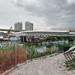 Ponte Nuovo 11