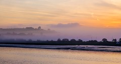 Misty morning glow. (Envy Photographic) Tags: bideford canoneos warm glow morning misty raw prime lens 50mmf18 explore nigelvaux primelens northdevon