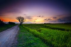 FOREEVER FAR. (Kamaruz Zaman) Tags: canon canonphotography colourful colour landscapes leefilter leecpl longexposure cloud penang
