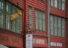2016-07-18 S9 JB 100318##cos30 Bryggen Handel, Knut Skurtveit, Bryggen Husflid (cosplay shooter) Tags: unesco worldheritage unescoworldheritage hanse bergen norway norwegen norge brygge 201607 x201608 100b