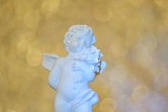 DSC_5109 (Milena Z) Tags:          442      angelo angel colore color luce giocodiluci ombra bokeh helios helios442 manuallens senzafiltri vladikavkaz
