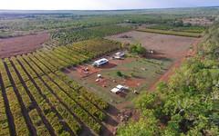 270 Golding Road, Acacia Hills NT