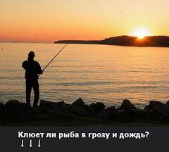 Клюет ли рыба в грозу и дождь? (Гоc Рыбнaдзор) Tags: golden 40d man crag concert family sunshine cat