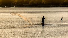 D71_0945-1 (Bill Brooks Photography) Tags: castnetting cast net fishing sunset warm light man silhouette water saltwater