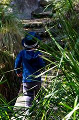 _SLN9771 (sonja.newcombe) Tags: tid tidbinbilla australia canberra nikon d7000 sigmalens