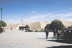 IMG_6713 (chungkwan) Tags: china chinese gansu province weather dry sands canon canonphotos travel world nature landmark landscape   dunhuang  crescent crescentlake  mingsha mingshamountain  camels silkroad