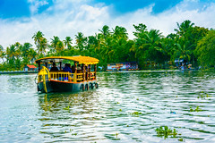 Shikara Boats in Alleppey Backwaters (wandercrumbs) Tags: green nature indian boat palm river lake culture coconut exotic backwaters snakeboatrace alleppey alappuzha kerela southindia south scenic boathouse boats asia landmark