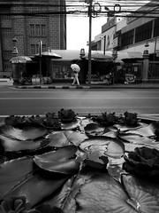 Untitled (RFVT) Tags: urbanvisions urban urbanlandscape urbancompo bangkok thailand streetphoto streetcompo streetstyle blackandwhite bw