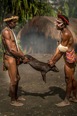The Dani's Holding the Piglet (tehhanlin) Tags: indonesia papua westpapua irianjaya wamena jayapura nusantara sony a7r2 a7rm2 humaninterest tribe thedanis sukudani portrait pigfeast earthoven ngc