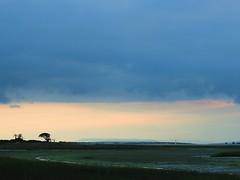The curtain (ekaterina alexander) Tags: the curtain chichester harbour clouds trees ekaterina england alexander sussex coast shore shoreline sea landscape autumn