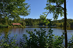 Ambiance Canada (Diegojack) Tags: paysages alsace vosges france etang feu ecromagny