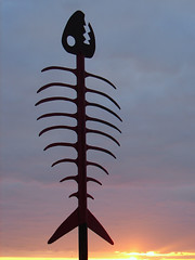 What did they do to you? (nedlugr) Tags: california ca sandiego sculpture art steel sunset fish skeleton clouds omot