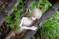 Forest of Wonder (AjiFox) Tags: bjd hazel luts yul satyr normal skin brown nature