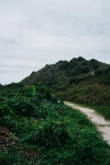 lol-2 (LopezYgor) Tags: ilha do mel cwb curitiba praia dgk adidas nikon