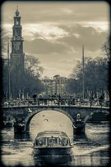 Amsterdam Prinsengracht (Michael Shoop) Tags: michaelshoop amsterdam netherlands holland noordholland prinsengracht canal water canalboat boat tourist bridge westerkerk bw blackandwhite seagulls canon7d