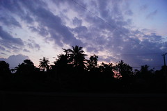 Sunrise in Cambodia (Lemuellz) Tags: pictures trip morning travel school people children photography friend scenery cambodia day photographer classmate orphanage photograph fields