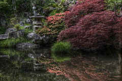 Japanese Garden (Yuya Sekiguchi) Tags: plants june japan stone photoshop japanese hotel japanesegarden pagoda pond scenery raw view culture ryokan  daytime  hdr  earlysummer  2010 koifish naganoprefecture   6      d90  photomatix       mountaintram   2010 komorocity tokiwakaninn