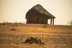 IMG_4836 Hut on the way Bikaner (Tarun Chopra) Tags: india gurgaon rajasthan touristattractions rajasthaninwinters