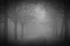 Foggy morning (april-mo) Tags: mist france misty fog foggy blurred february brouillard nord blackandwhitepicture somain blurism