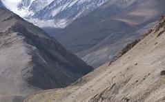 Markha valley scenery (Ziemek T) Tags: hiking ladakh markhavalleytrek